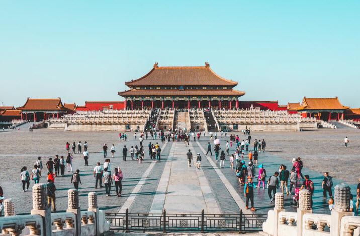 中国の豚コレラ問題